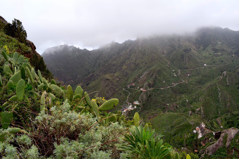 Vandreferie på Tenerife: 6 dage med rygsæk og telt