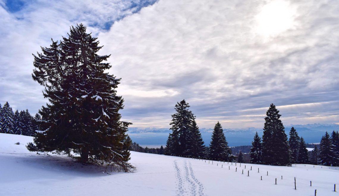 Sneskovandring i Schweiz