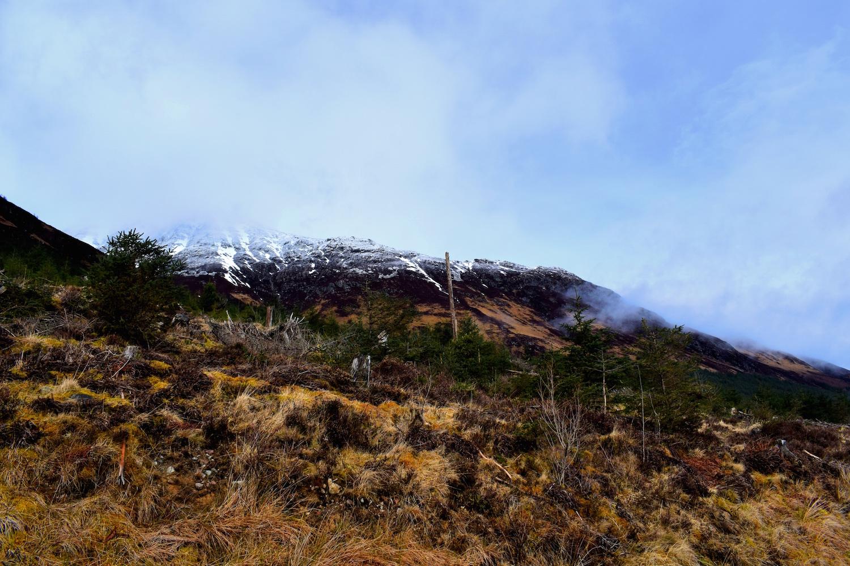Great Glen Way Gairlochy - Laggan