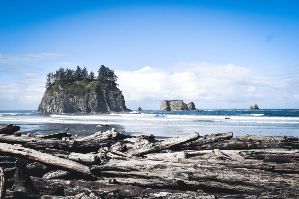 Guide til Olympic National Park Second Beach