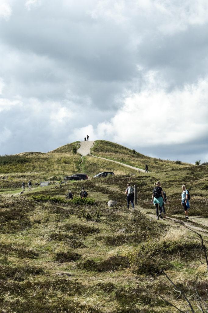 Trehøje i Mols Bjerge