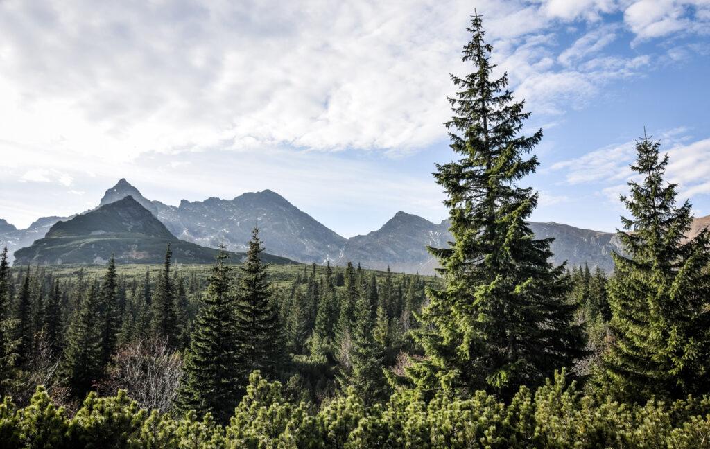 Tatrabjergene