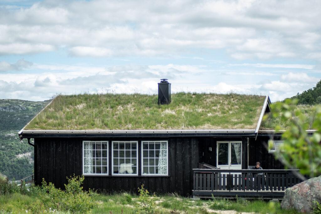 Leje hytte i Sydnorge